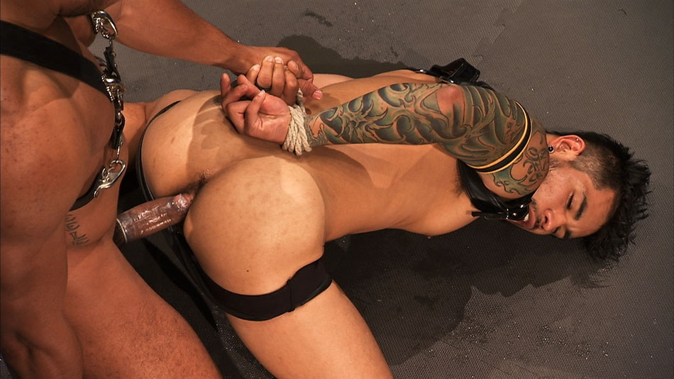 Punched and Pounded: Draven Torres & Lawson Kane